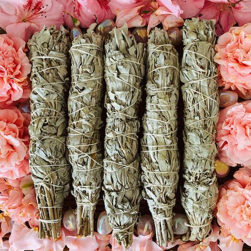 Certified Organic White Sage Smudge (22-24cm)- 5 PACK