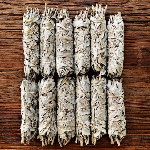 Small White Sage USA 12 Pack